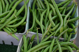 Boxes of green beans